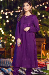 Warda Ready To Wear Winter Collection 2020